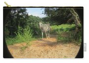 Horse Walks Toward Camera Carry-all Pouch