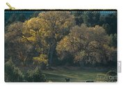 Horses In A Backlit Field With Fall Colored Trees Sedo Carry-all Pouch