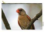 Hot Cardinal Carry-all Pouch