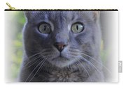 House Cat Stare Carry-all Pouch