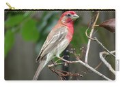House Finch At Rest Carry-all Pouch