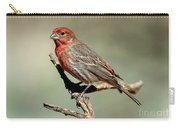 House Finch Carpodacus Mexicanus Carry-all Pouch