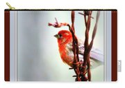House Finch - Finch 2241-004 Carry-all Pouch