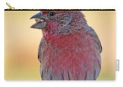House Finch II Carry-all Pouch