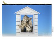 House Of Kittens Ck528 Carry-all Pouch