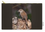 House Wren Carry-all Pouch