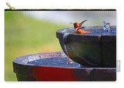 Hummingbird Bath Carry-all Pouch