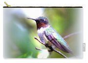 Hummingbird - Beautiful Carry-all Pouch