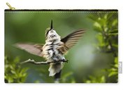 Hummingbird Happy Dance Carry-all Pouch