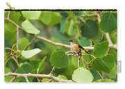 Hummingbird In Tree Carry-all Pouch