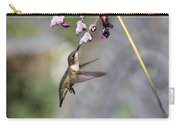 Hummingbird - Little Sipper Carry-all Pouch