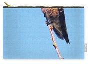 Hummingbird On Acacia Bush Twig Carry-all Pouch