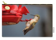 Hummingbird On Feeder Carry-all Pouch