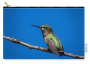 Hummingbird Posing Carry-all Pouch