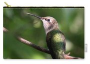 Hummingbird - Ruby-throated Hummingbird - Detail Carry-all Pouch