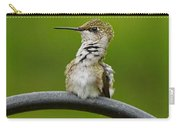 Hummingbird Stretching  Carry-all Pouch