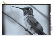 Hummingbird With Old-fashioned Frame 1 Carry-all Pouch