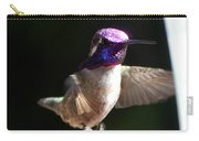 Hummingbrid Male Costa Carry-all Pouch