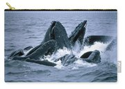 Humpback Whales Gulp Feeding On Herring Carry-all Pouch