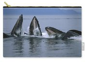 Humpback Whales Gulp Feeding Southeast Carry-all Pouch