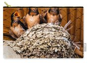 Hungry Baby Swallows - Antelope Island - Utah Carry-all Pouch