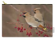 Hungry Birds Carry-all Pouch