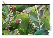 Hungry Chiriqui Conures Carry-all Pouch