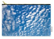 Huron Sky 4 Carry-all Pouch