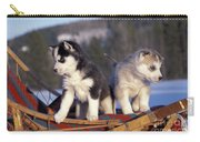 Huskies On A Sled Carry-all Pouch