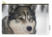 Husky Dog Breading Centre Carry-all Pouch by Lilach Weiss