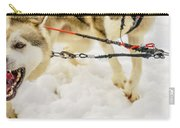 Husky Sled Dogs, Lapland, Finland Carry-all Pouch