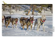 Husky Sled Dogs, Lapland, Sweden Carry-all Pouch