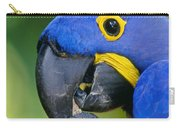 Hyacinth Macaw Anodorhynchus Carry-all Pouch