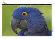 Hyacinth Macaw Portrait Carry-all Pouch