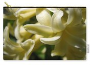 Hyacinth Named City Of Haarlem Carry-all Pouch
