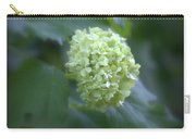 Hydrangea Glory Carry-all Pouch