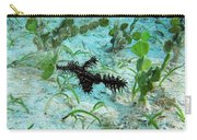 I Am A Hairy Ghost Pipe Fish Carry-all Pouch