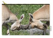 Ibex Doing Battle Carry-all Pouch