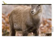 Ibex Pictures 10 Carry-all Pouch