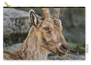 Ibex Pictures 38 Carry-all Pouch