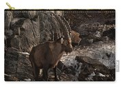 Ibex Pictures 86 Carry-all Pouch
