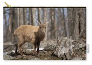 Ibex Pictures 92 Carry-all Pouch