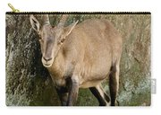 Ibex Pictures 115 Carry-all Pouch