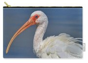 Ibis Ruffled Carry-all Pouch
