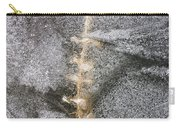 branch in ice - Madison - Wisconsin Carry-all Pouch