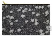1m9335-ice Flowers On Black Ice Carry-all Pouch