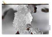 Icy Elegance Carry-all Pouch by Elena Elisseeva