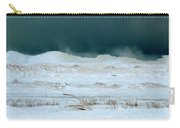 Icy Lake Michigan Carry-all Pouch