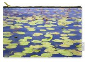Idyllic Pond Carry-all Pouch