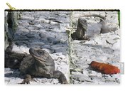 Iguana Bask In The Sun With You Carry-all Pouch